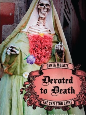 Andrew Chesnut's book, Devoted to Death, Santa Muerte, the Skeleton Saint